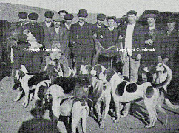 Gt Grandfather Issac Sarginson in 1896 with a one of our early JRTs, you will also find 2 fell terriers in the picture if you search hard enough!